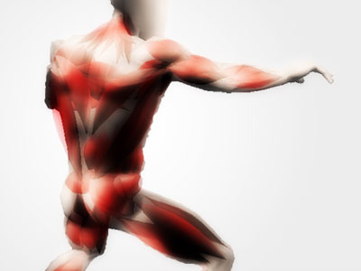 Human model fitted with approximated muscles underneath