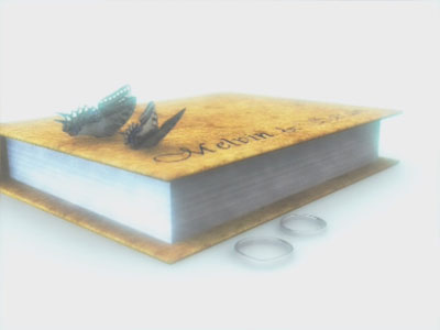 A pair of butterflies return and lands on the book
